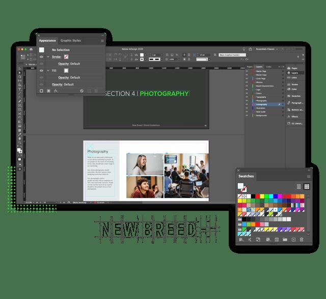 Screenshot of brand and visual design in Adobe.