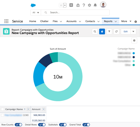 Salesforce report on campaign opportunities
