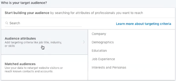 LinkedIn audience attributes selection